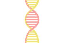 полезные мутации человека